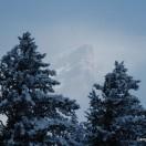 Bäume und ein Berg im Hintergrund, fotografiert vom Campingplatz in Banff aus